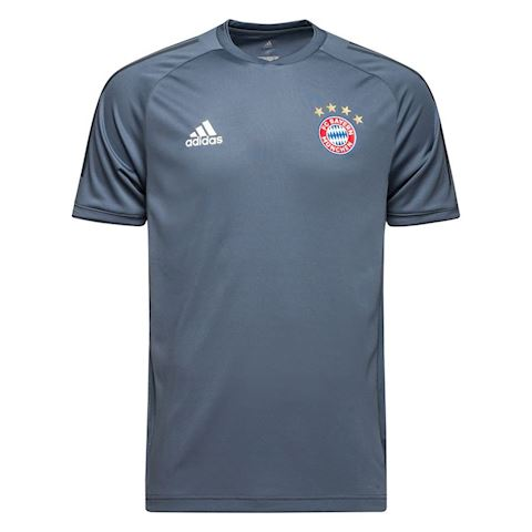 adidas Bayern München Training T-Shirt UCL - Grey/Black Image