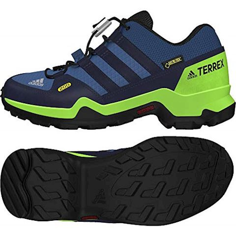 adidas TERREX GTX Shoes Image