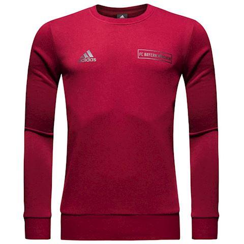 adidas Bayern München Graphic Crew Sweatshirt - Collegiate Burgundy Image