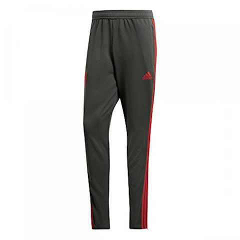 adidas FC Bayern Training Pants Image