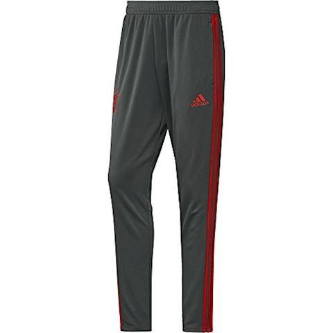 adidas FC Bayern Training Pants Image 6