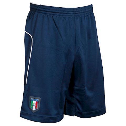 Puma Italy Mens 2016 Blue Training Shorts Image