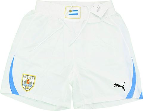 Puma Uruguay Mens Player Issue Away Shorts 2010 Image